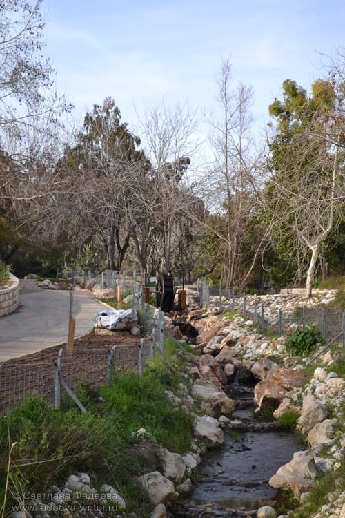 Иерусалимский ботанический сад