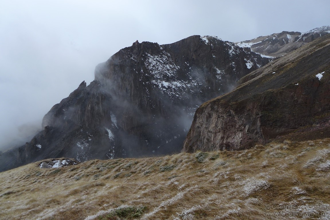 Дорога вывела нас на настоящий альпийский луг.